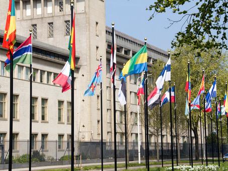 ¿Qué es y para qué sirve el derecho penal internacional?
