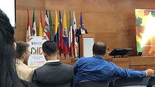 Ponencia Congreso Internacional CIID 201
