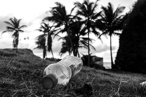 A%20plastic%20water%20bottle%20littered%20on%20a%20beach%20in%20Barbados_edited.jpg