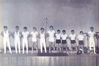 saggio 1967