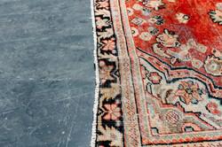 Persian Rug #2ctShots-417