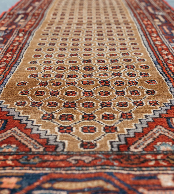 Persian Ailse Runner