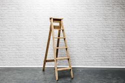 Vintage Step Ladder #2
