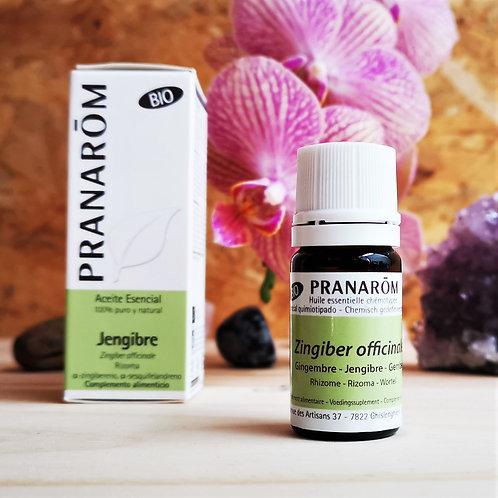 Óleo Essencial de Gengibre - Organico - Pranarôm