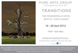 Transitions, PureArts 2013
