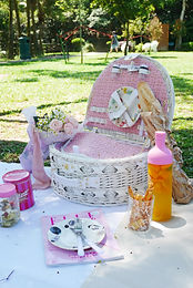 Fall in love with France Picnic Basket
