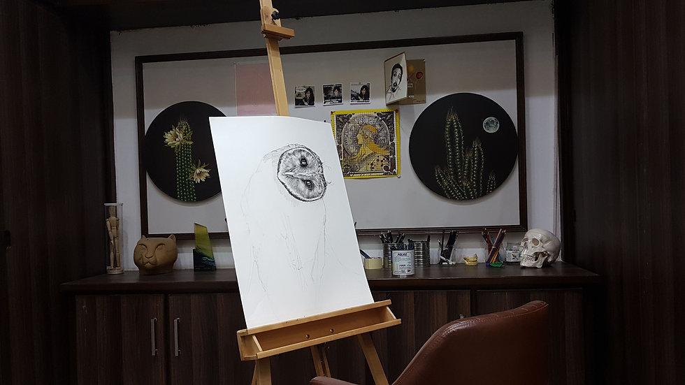 studioshot1.jpg
