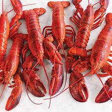 just-the-lobsters.jpg