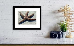 cayo-costa-dancing-starfish-dan-podsobin