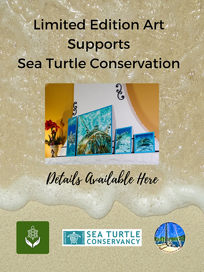 sea turtle art posters.png