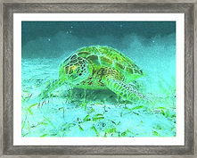 sea-turtle-impressionism-framed-art.jpg