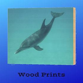 6-Wood-Prints-Island-Hoppers-Art-by-Dan-