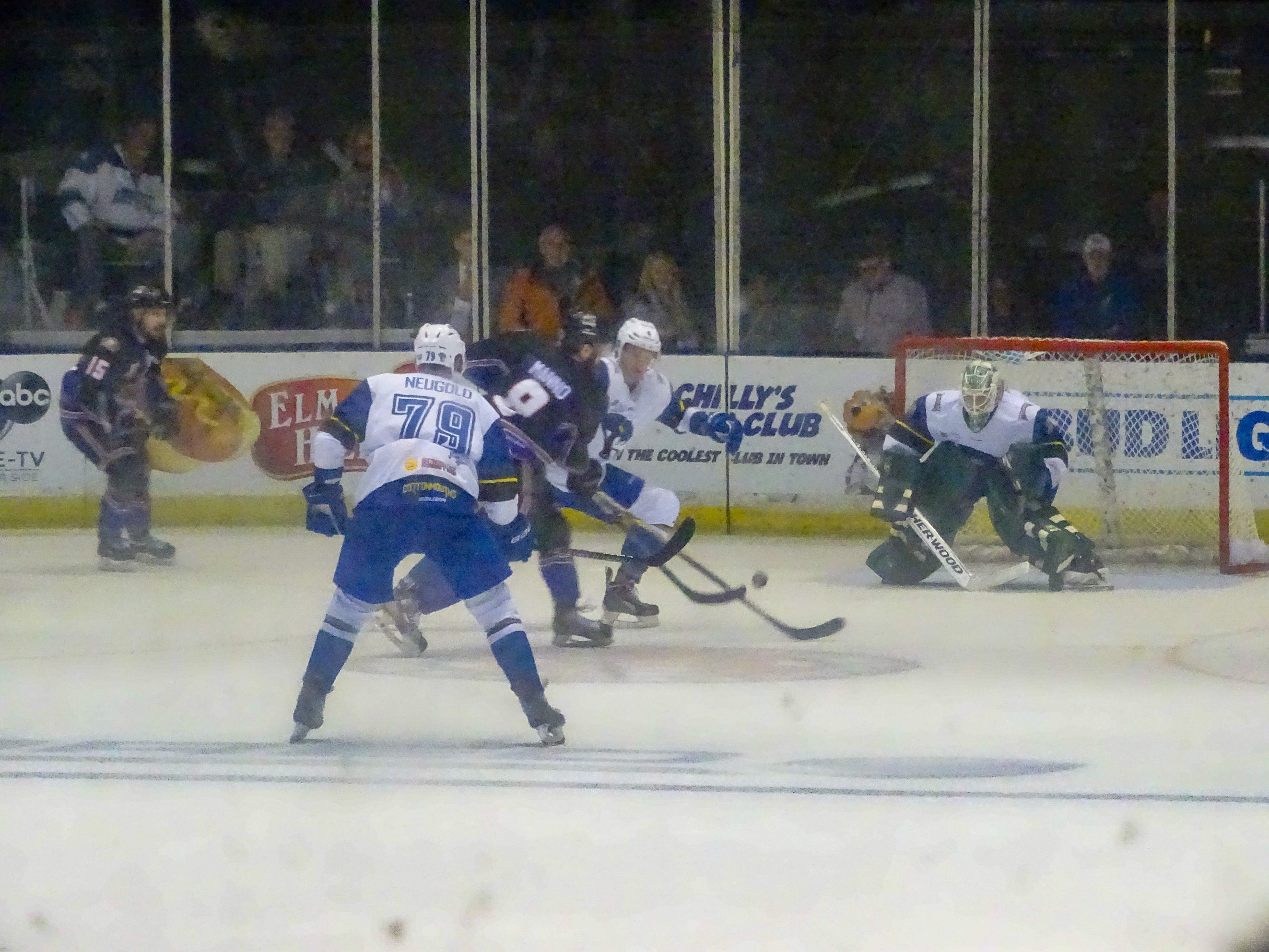 Knoxville_Ice_Bears_action_in_front_of_C