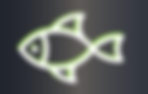 fwf abgetrennte Fische GRAUER BACK0.png
