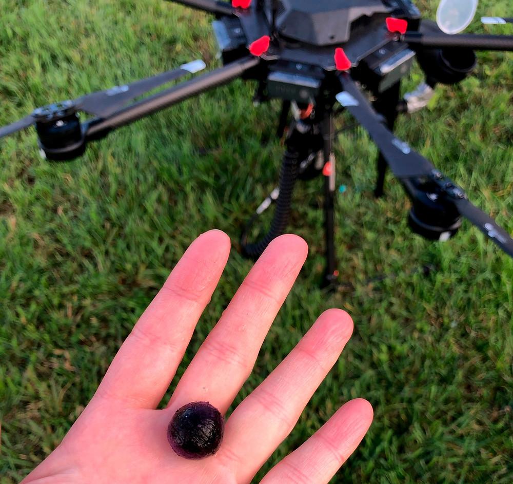 Drones Flash Forest para plantar árboles.
