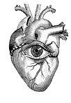 serce1.jpg