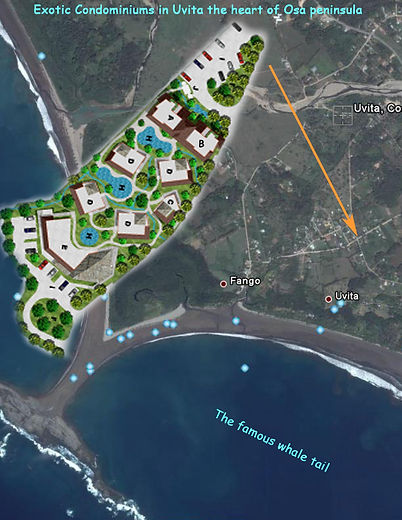 project Costa Rica.jpg
