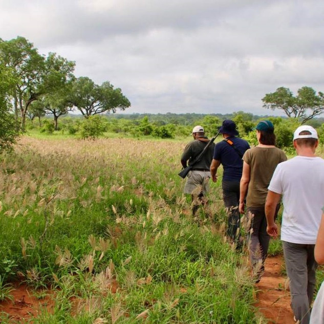 ZenGuiding Walking Safari g