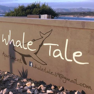 ZenGuiding Whale Tale