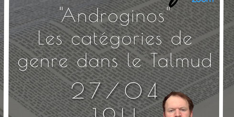"""27/04 - Etude : """"Androginos - Les catégories de genre dans le Talmud"""" - Stefan Goltzberg"""