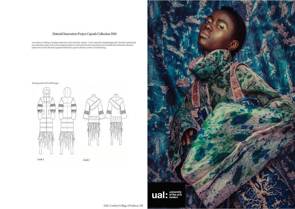 10 Page Digital Portfoilo_Page_05.jpg