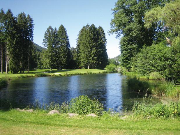 golfclub-guetermann-gutach-ev_031547_ful