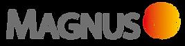 logo magnus gris nuevo.png