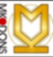 MK Dons.jpg