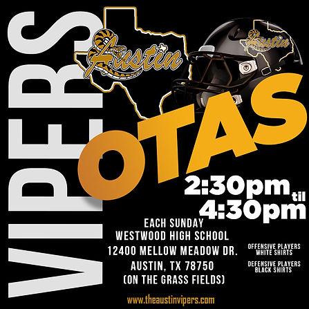 OTAs Flyer.jpg