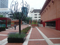 (34) British Library trees, planters and topiary Sphears