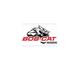 BOBCAT resized.jpg