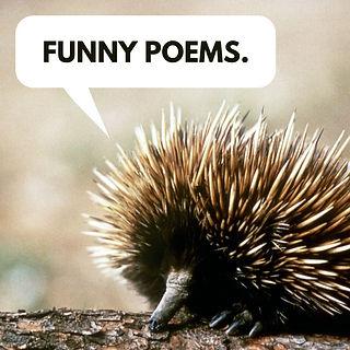 Funny Poems Porcupine