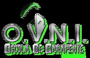 Logo OVNI 2020 -  SICE 1994 VERDE.png
