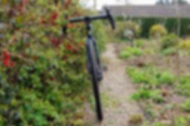 Weaver Garden.jpg