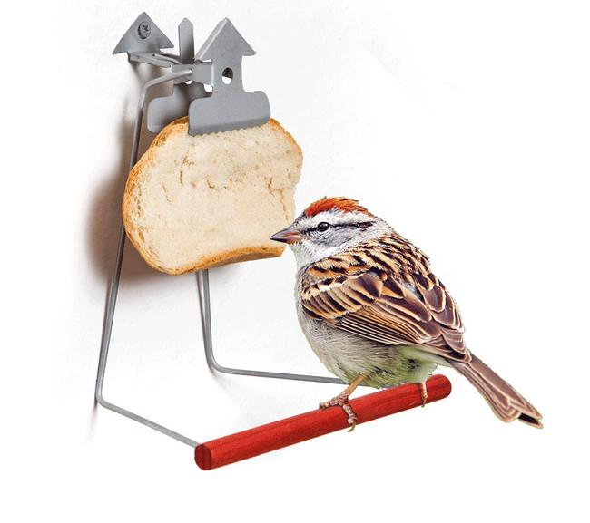 clip-and-tweet-bird-attraction-by-nitsan-hoorgin-designboom.jpg