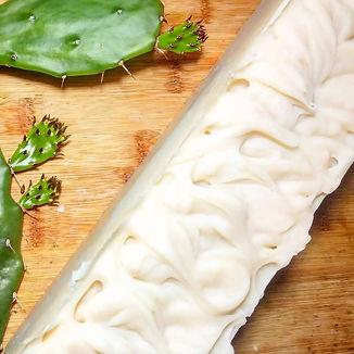 Cactus soap.jpg