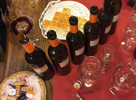 Wine tasting in regionBela krajina