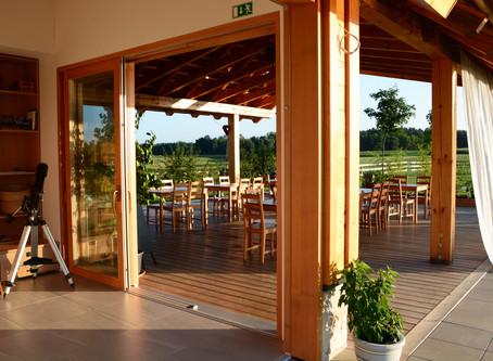 Best of Slovenian wine region