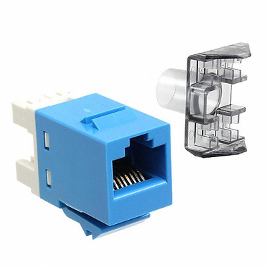 Jack Modular Azul AMP Cat 6 T568A/T568B, unshielded 1375055-6