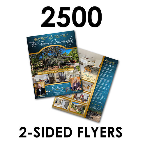 "2500 2-Sided 8.5x11"" Flyers"