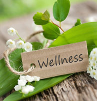WIX-Workplace Wellness.jpg