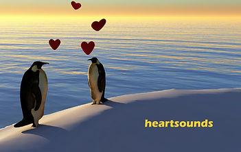 Wix-Heartsounds.jpg