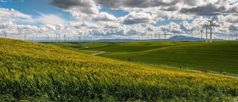 wind-farm-on-a-green-farm-field-in-summe