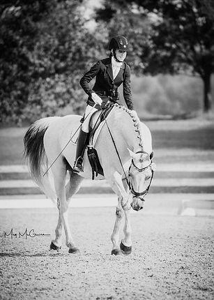 Abi Kroupa Erudite Equestrian About Me