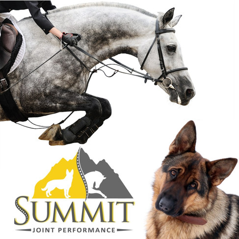 Product Review- Summit Joint Performance