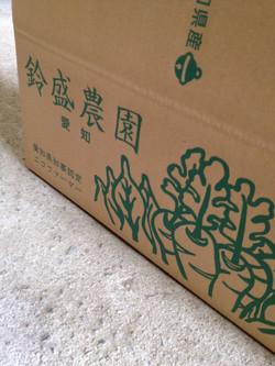 出荷箱パッケージ