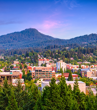view-from-skinner-s-butte-eugene.png