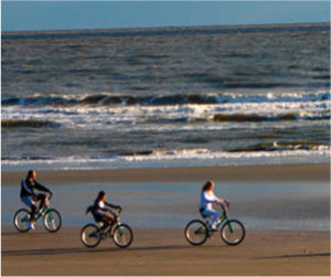 Top Things to Do During Your Stay at Kiawah Island Resort