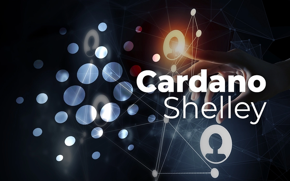 Cardano Shelley Era