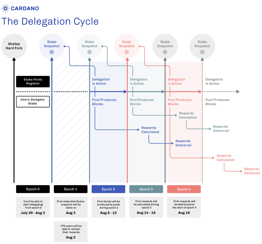 Cardano delegation cycle